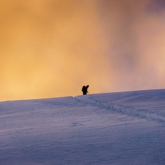Firesky silhouette